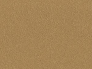 Housses Cuir Synthétique Beige 50007