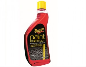 Paint Protect Protection 365